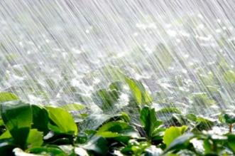 Météo : temps chaud, averses et passages nuageux ce dimanche
