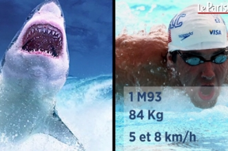 VIDEO – Michael Phelps en compétition avec un requin blanc
