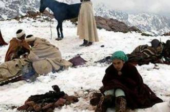 La province de Taza face à une intense vague de froid