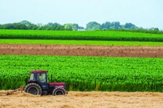 Ministère de l'Agriculture: voici le budget d'investissement en 2021
