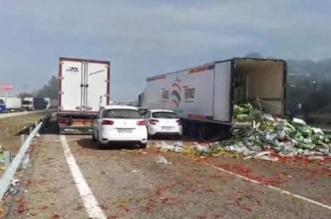 Des camions marocains saccagés en Espagne (VIDEO)