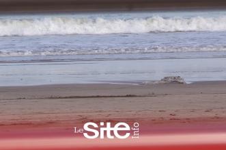 Mohammédia: un «mini-tsunami» sur les côtes de la ville (VIDEO)