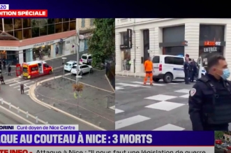 Attaque de Nice: la France en « alerte maximale »